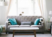 Sofa w salonie i kot